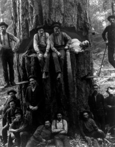 2451_posing_lumberjacks