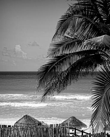 cancun-beach-in-black-and-white-photography-ann-powell